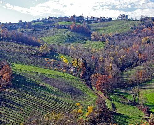 Emilia Romagna: ricerca per bambini